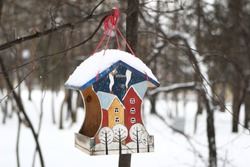 bird feeder hanging on a tree in the park. city, winter in the city yard. Winter morning City landscape. Novosibirsk