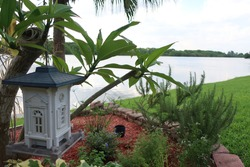 Bird Feeder over looking lake in the evening