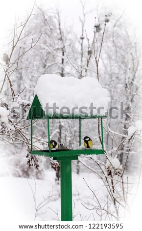 bird feeders in the winter snow-covered park