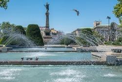Bird flies across water fountain in Ruse city park Bulgaria