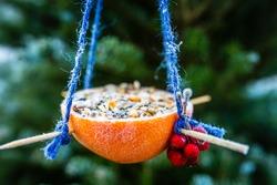 Bird food for the winter. Do-it-yourself energy bird fat balls.