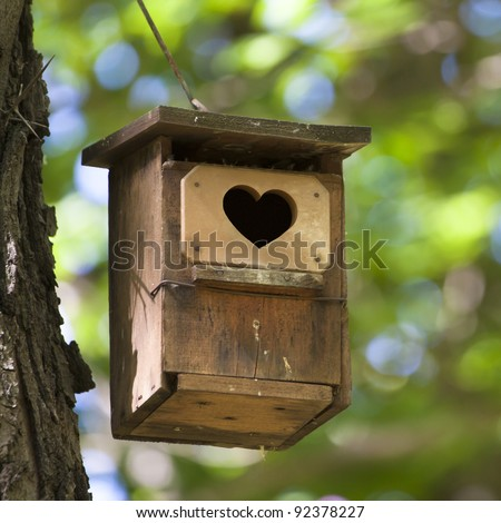 Bird house hanging from the tree with the entrance hole in the shape of a heart. - stock photo