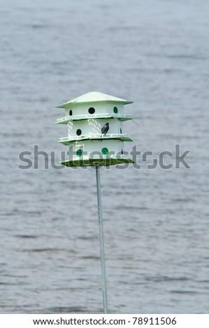 Bird house hotel has a beautiful lake view