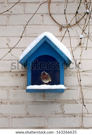 Bird house  with robin in the snow       #163266635