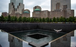 Bird in flight over 9 11 Memorial fountain in New York Manhattan