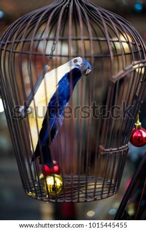 Bird inside bird nest  #1015445455