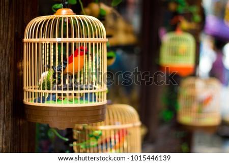 Bird inside the nest  #1015446139
