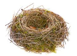 Bird nest empty isolated on white