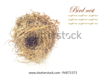 Bird nest  on white background - stock photo