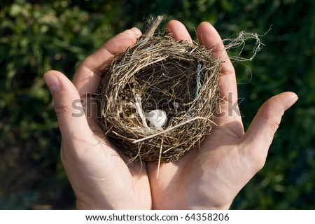 Bird nest with a tiny white egg in a woman's outstretched hands in front of a natural green background.