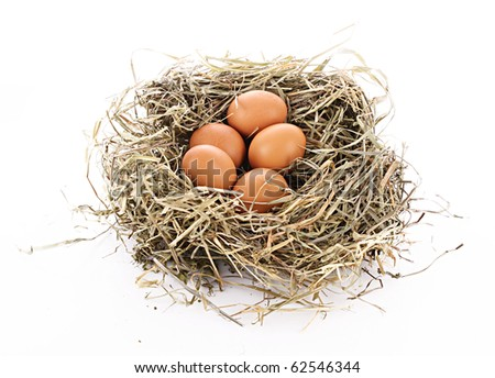 Bird nest with three eggs isolated on white