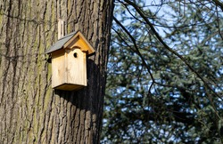 Bird nesting aid made of wood on a tree, nest box