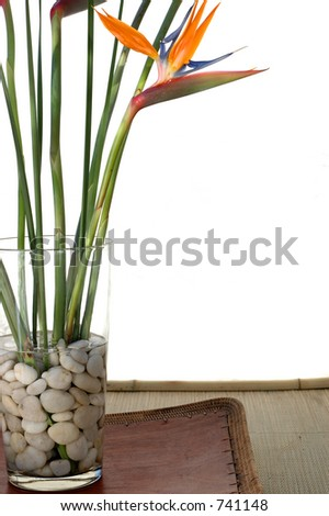 Bird Of Paradise flowers on white background sitting on a asian tray.