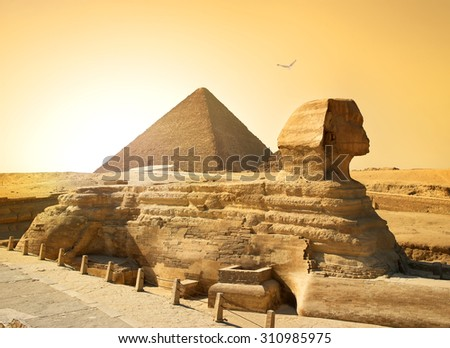 bird over sphinx and pyramid in ...