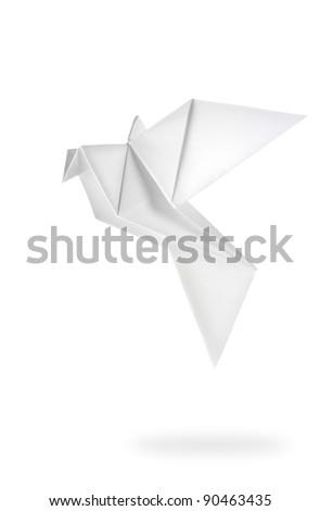 Bird paper