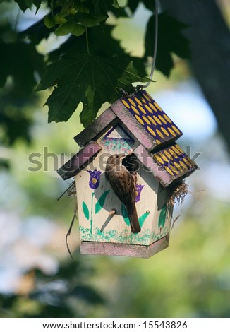 bird perched on birdhouse
