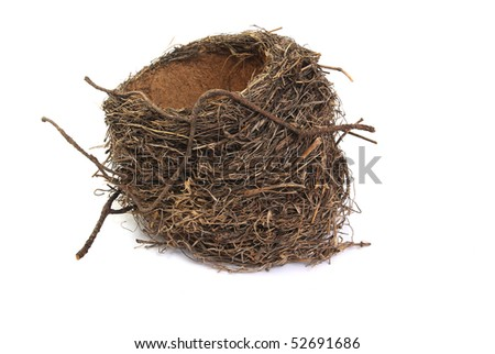 bird's nest, isolated on a white background