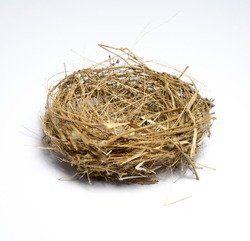 Bird's nest  on white background
