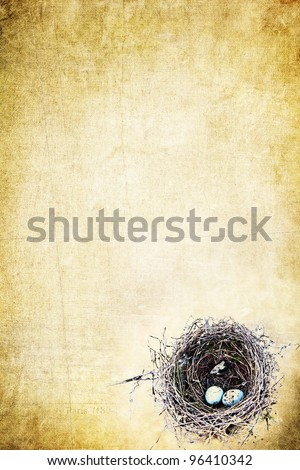 Bird's nest with eggs on a grunge yellow background with copy space.