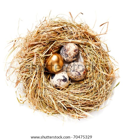 Bird's nest with three ordinary and one golden egg