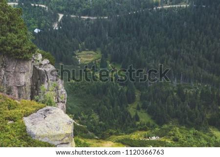Bird view of forest and river near Kocioł malego stawu, Poland Zdjęcia stock ©