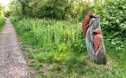 bird wood carving sculpture next to a footpath in Middlesbrough, UK.