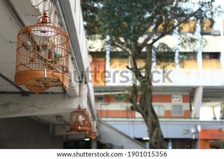 Birdcage in a public housing estate in Hong Kong Foto stock ©