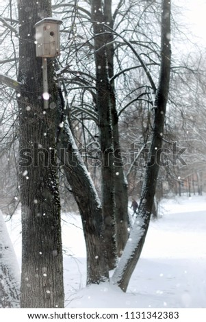 birdhouse in a tree in snow winter #1131342383