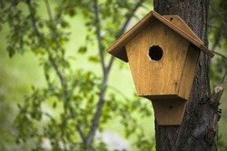 birdhouse in the spring forest  / natural background /
