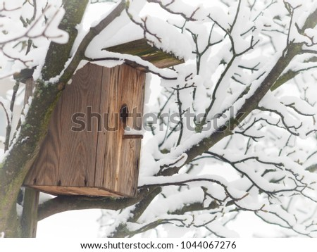 birdhouse on a tree in the winter in the city Park