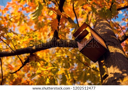 Birdhouse on a tree with yellow leaves in autumn park