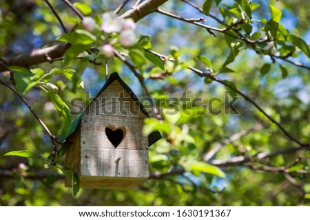 Birdhouse with heart shaped opening  hanging in an apple tree in the spring Stockfoto ©
