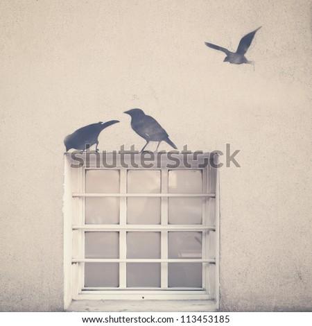 Birds and Window, Retro Image - stock photo