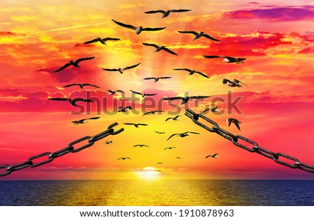 Birds breaking the chain fly to beautiful sunrise. Seagull free flock flying over the sea towards the shining sun on horizon. Chain links are torn. Freedom concept  ストックフォト ©