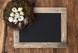 birds eggs in nest and vintage blackboard on rustic wooden background. easter composition