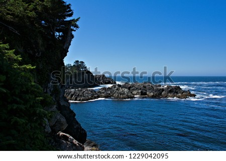 Birds eye view over rugged coast of the west coast into the open untamed waters of pacific ocean pristine nature green forest foliage elevated rock formations love it explore it blue sky background  #1229042095