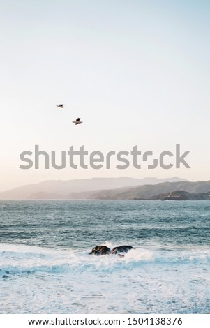 Birds flying at sunset over crashing waves at Land's End in San Francisco with Marin Headlands, Point Bonita Lighthouse, and Northern California coastline in distance #1504138376