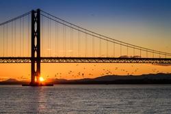 Birds flying at sunset under the bridge in Scotland