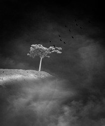 Birds flying away from a solitary tree growing on the edge of a cliff in a haunting surreal cloudscape, for the concept of life on the edge.