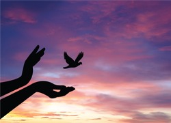 birds flying for freedom from an open hand, freedom concept, bird released from hand, bird set free