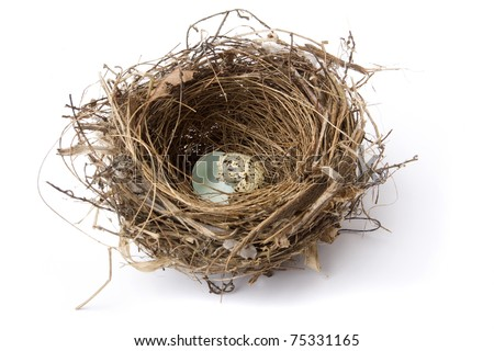 Birds nest with broken eggs isolated in white background - stock photo