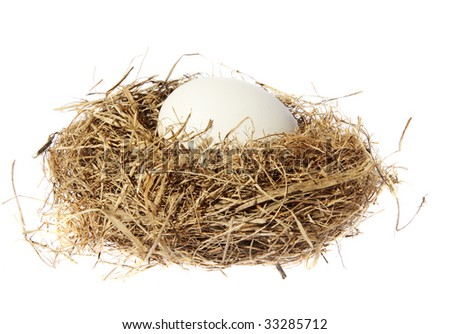 Birds nest with eggs on a white background. (isolated)