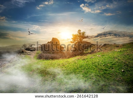 Birds over meadow on a mountain at sunrise
