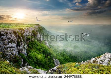 Birds over plateau at the cloudy sunset