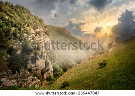 Birds over rocks and fog at the sunrise