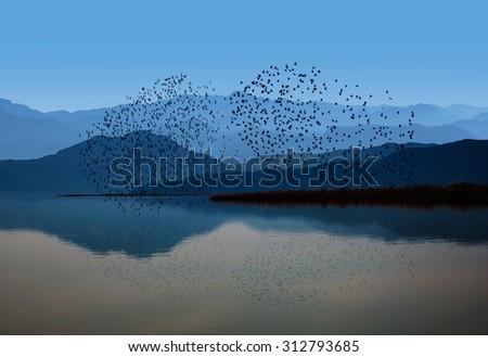 Birds over the mountain