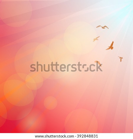 Birds, seagulls silhouette in the rays on pink background, sunset, dawn.  #392848831
