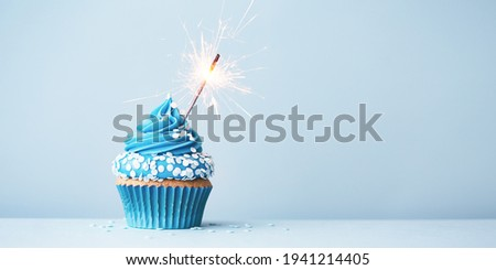 Birthday cupcake with celebration sparkler and sprinkles for a birthday party