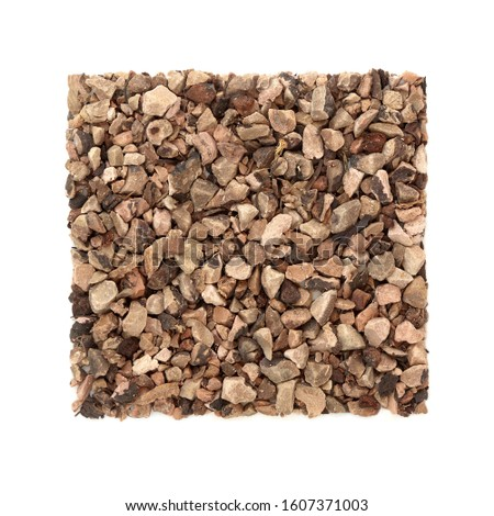Bistort root herb used in herbal medicine to treat diarrhoea, digestive problems, mouth and throat infections & wounds including burns & has many other health benefits. On white. Polygonum bistorta.