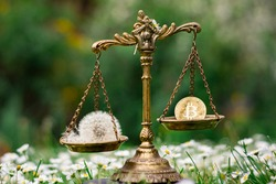 BITCOIN AND A DANDELION ON SCALES. CONCEPT: BITCOIN MINING ENERGY CONSUMPTION